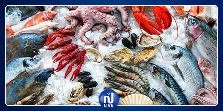 ارتفاع قيمة صادرات منتجات الصيد البحري بنسبة 41 %