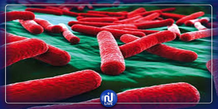 Kébili : Hausse du nombre de personnes atteintes de fièvre typhoïde