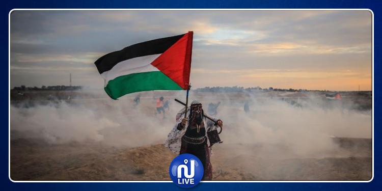 قبل يومين من ذكرى  النكبة : تضاعف عدد الفلسطينيين 9 مرات  منذ عام 1948