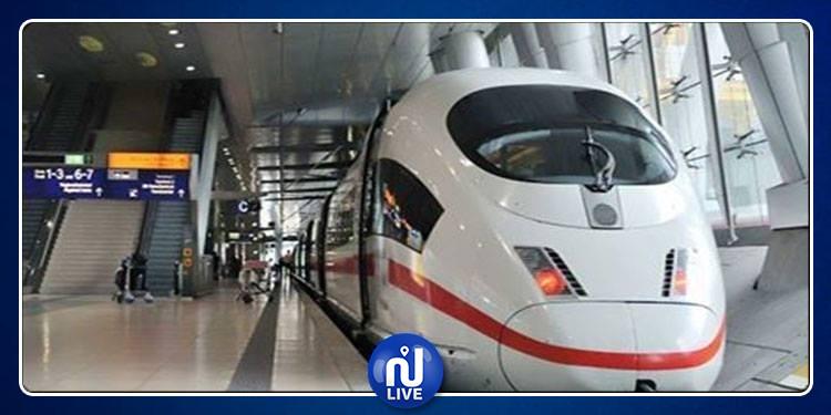 حلزون يعطل حركة القطارات ويلغي عشرات الرحلات.. التفاصيل