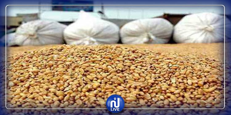 المرصد الوطني للفلاحة: أسعار الحبوب تتجه نحو الإرتفاع